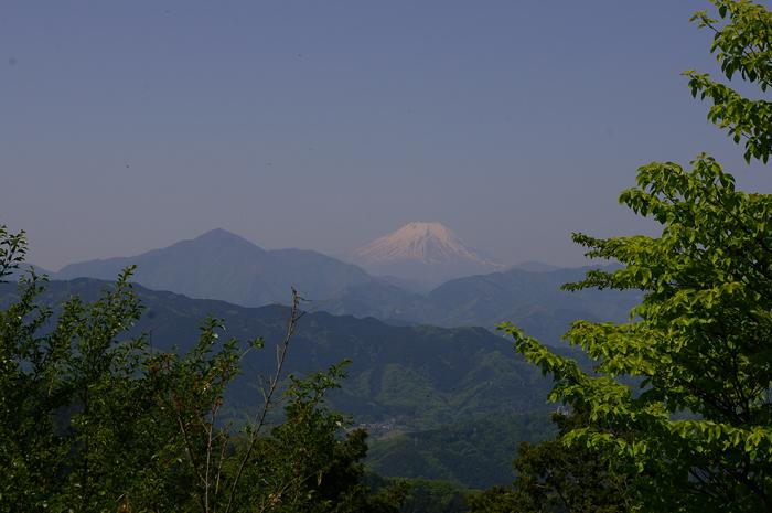 高尾山山頂の大見晴らし園地から眺める富士山