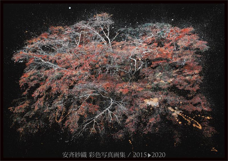 安斉紗織 彩色写真画集 2015-2020