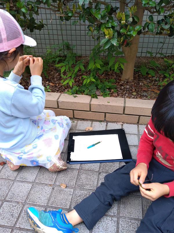 写真協力:日本自然保護協会