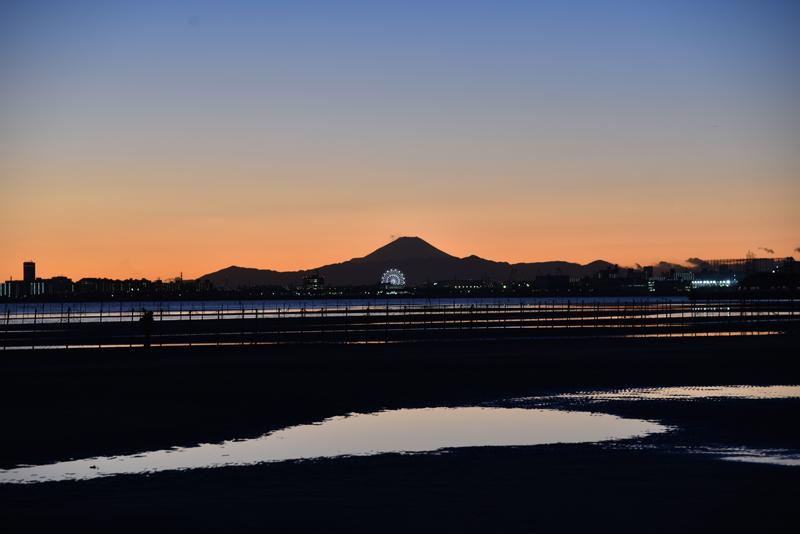 三番瀬干潟の夕景、富士山