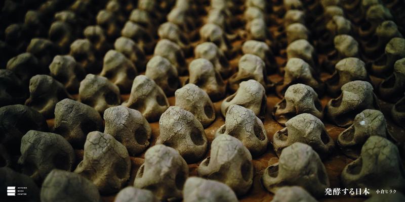 発酵する日本