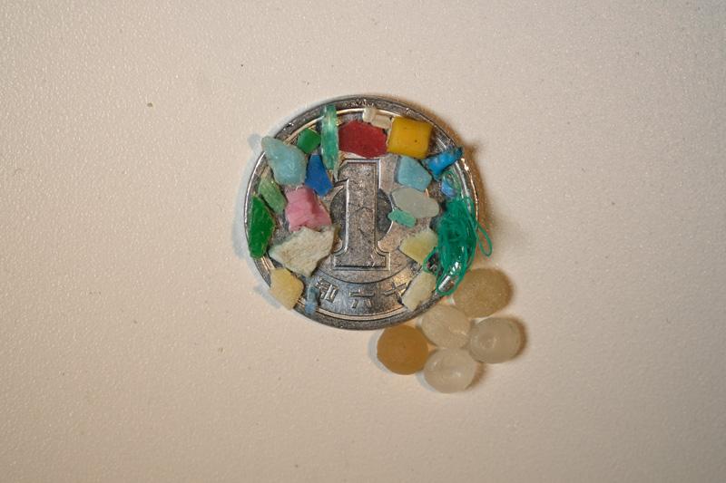 マイクロプラスチック。1円玉との比較で極小だとわかる(写真提供:中嶋亮太)