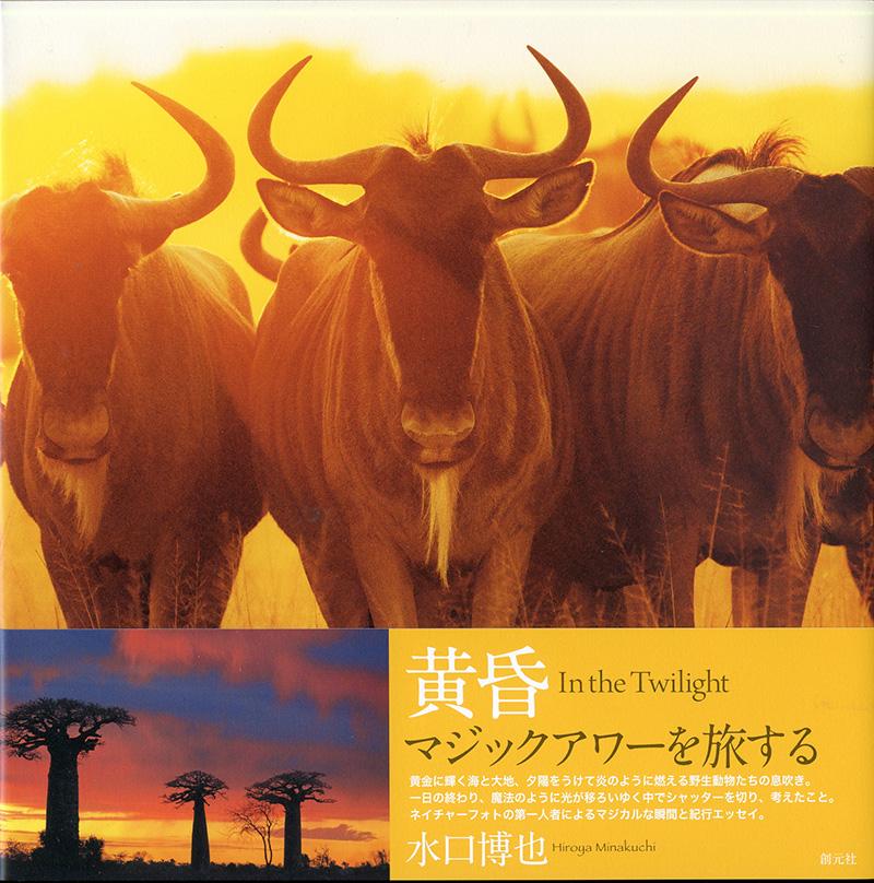 『黄昏 in the twilight』