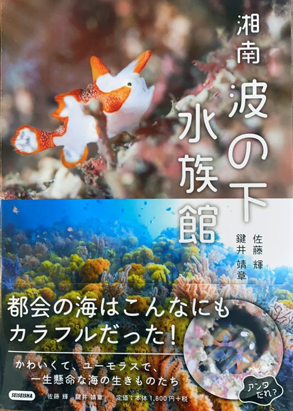 『湘南 波の下水族館』