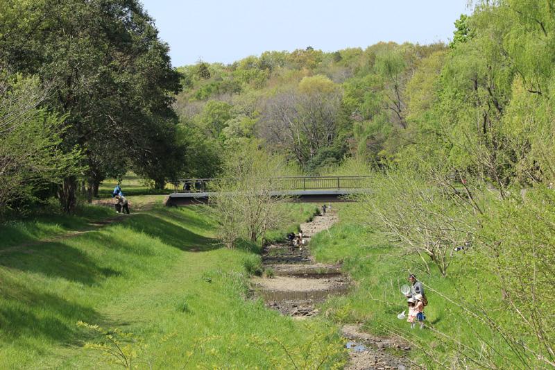 むさしのの都立公園「野川公園」